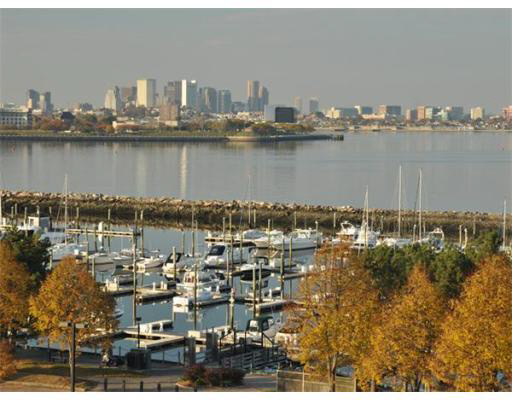2 Bedrooms, Marina Bay Rental in Boston, MA for $3,000 - Photo 2