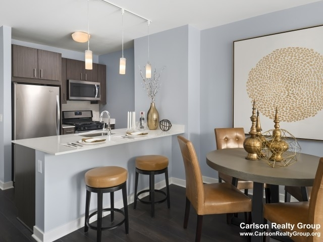 2 Bedrooms, The Loop Rental in Chicago, IL for $3,267 - Photo 2