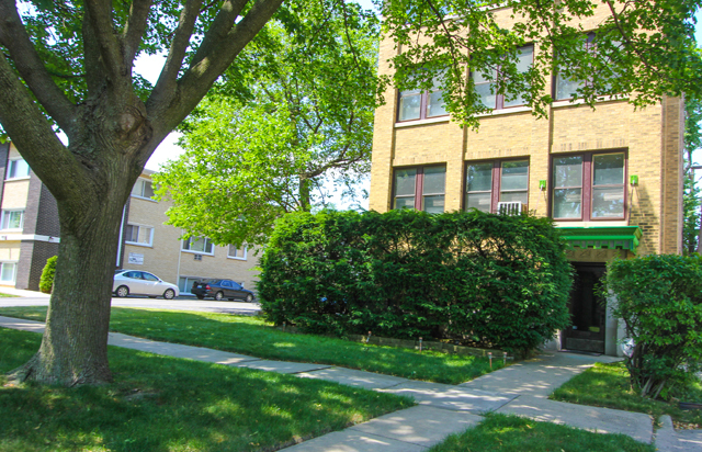 3 Bedrooms, Oak Park Rental in Chicago, IL for $2,000 - Photo 1