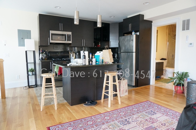 4 Bedrooms, Washington Square Rental in Boston, MA for $6,500 - Photo 2