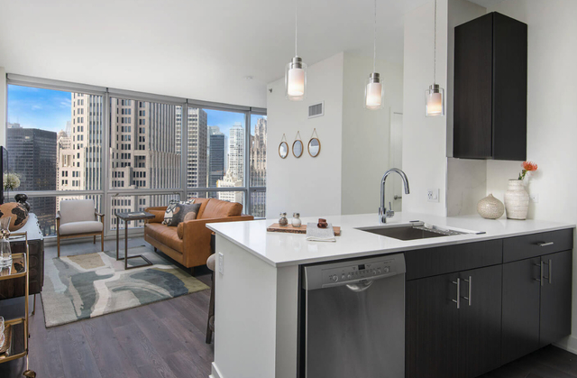 2 Bedrooms, Streeterville Rental in Chicago, IL for $4,362 - Photo 2