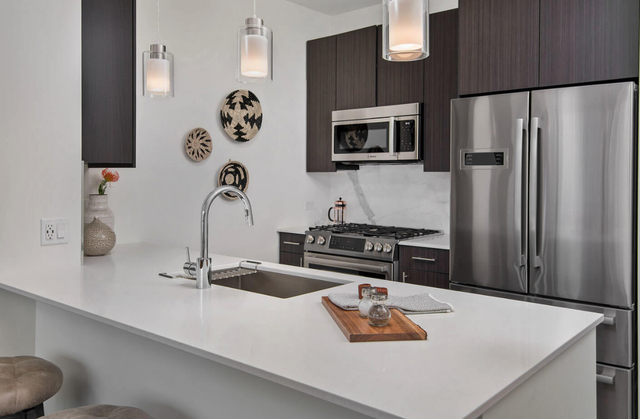 2 Bedrooms, Streeterville Rental in Chicago, IL for $4,362 - Photo 1