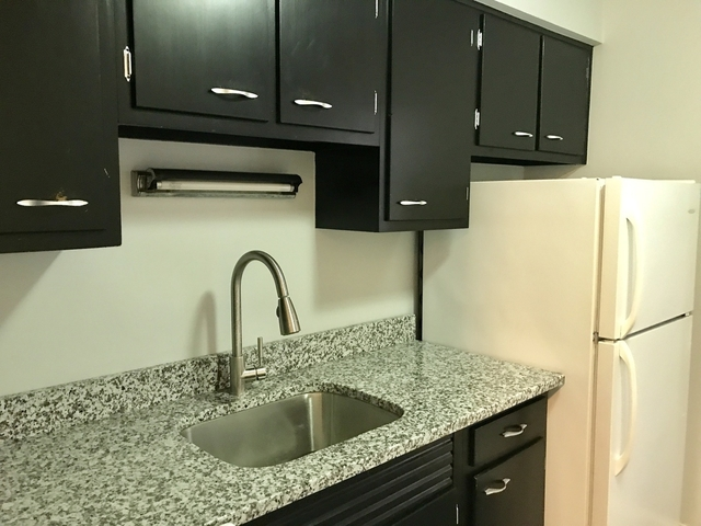 1 Bedroom, Edgewater Beach Rental in Chicago, IL for $1,400 - Photo 1