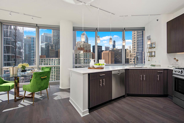 Studio, Streeterville Rental in Chicago, IL for $2,377 - Photo 2