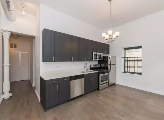 1 Bedroom, Fulton River District Rental in Chicago, IL for $1,900 - Photo 1