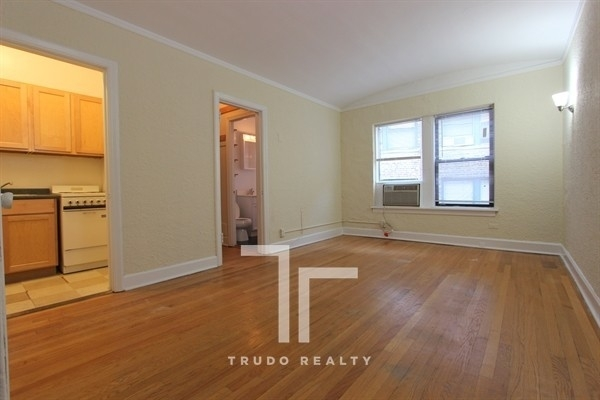 Studio, Park West Rental in Chicago, IL for $1,075 - Photo 1