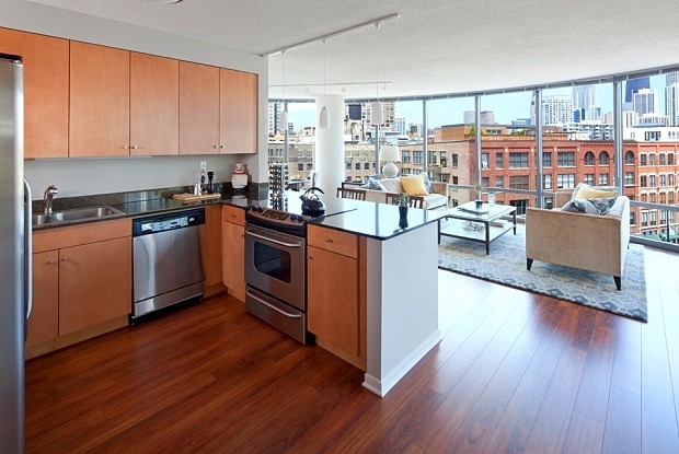 2 Bedrooms, River North Rental in Chicago, IL for $3,833 - Photo 2