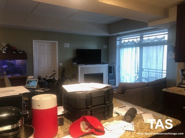 2 Bedrooms, Fulton River District Rental in Chicago, IL for $3,500 - Photo 2