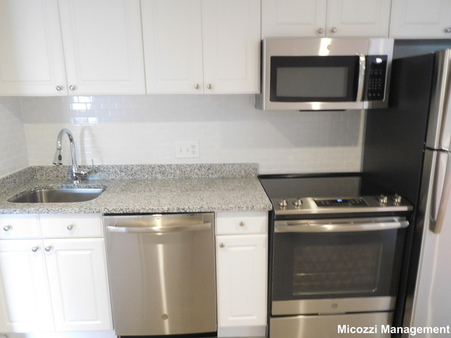 2 Bedrooms, Thompsonville Rental in Boston, MA for $2,495 - Photo 1