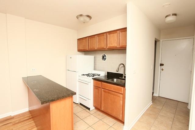 Studio, Edgewater Beach Rental in Chicago, IL for $825 - Photo 2