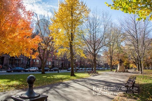 1 Bedroom, Back Bay East Rental in Boston, MA for $3,650 - Photo 2