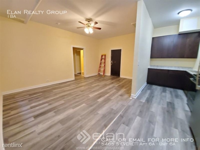 Studio, East Hyde Park Rental in Chicago, IL for $1,000 - Photo 2