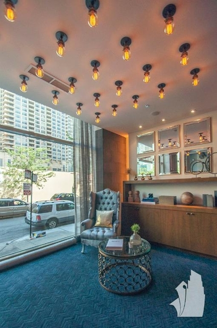 Studio, Streeterville Rental in Chicago, IL for $2,515 - Photo 2