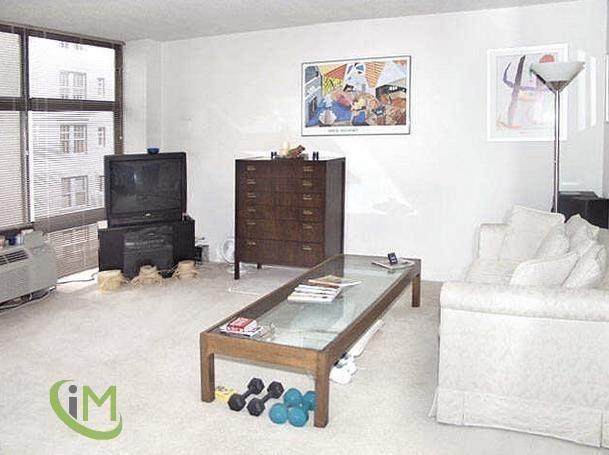 Studio, Gold Coast Rental in Chicago, IL for $1,500 - Photo 1