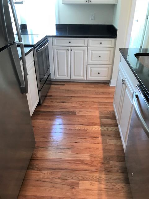 1 Bedroom, Neighborhood Nine Rental in Boston, MA for $3,255 - Photo 1