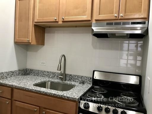 1 Bedroom, Rogers Park Rental in Chicago, IL for $1,095 - Photo 1