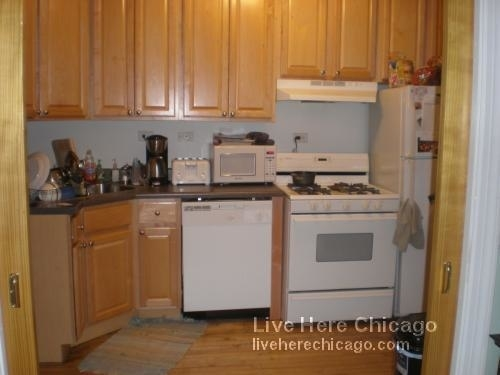 3 Bedrooms, Lakeview Rental in Chicago, IL for $2,250 - Photo 1