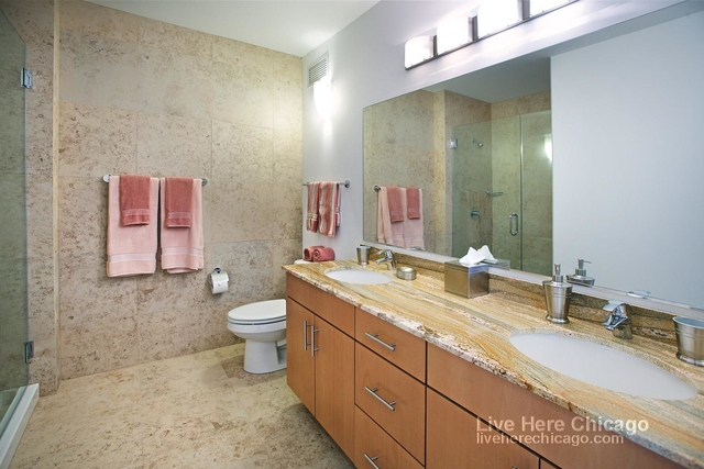 2 Bedrooms, Streeterville Rental in Chicago, IL for $3,199 - Photo 2
