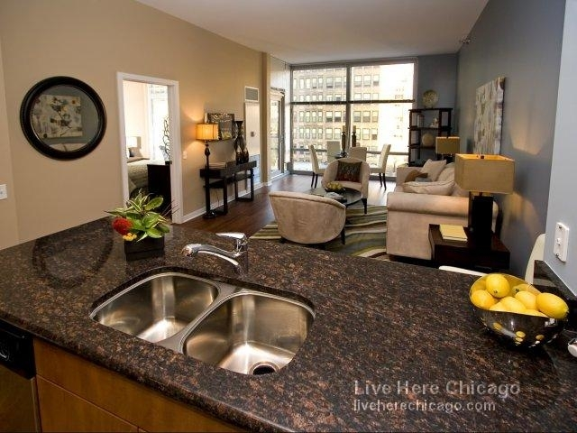 1 Bedroom, South Loop Rental in Chicago, IL for $2,368 - Photo 2