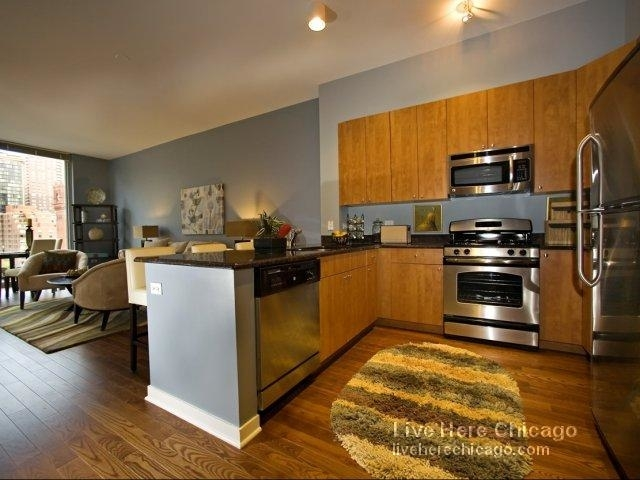 2 Bedrooms, South Loop Rental in Chicago, IL for $3,490 - Photo 1