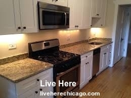 4 Bedrooms, Lake View East Rental in Chicago, IL for $3,500 - Photo 2