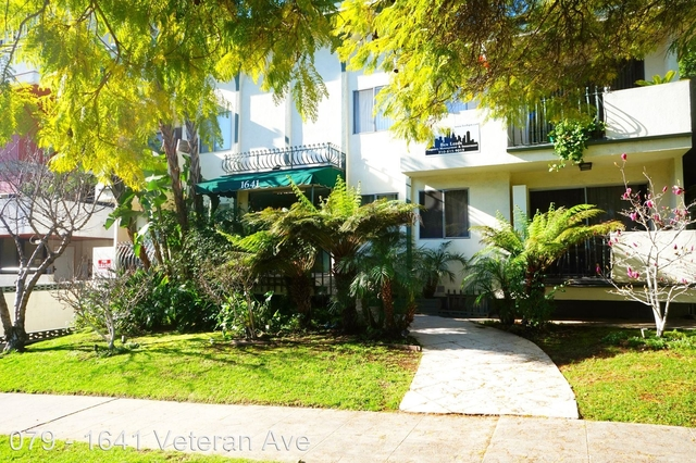 2 Bedrooms, Westwood Rental in Los Angeles, CA for $2,675 - Photo 1