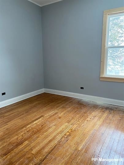 4 Bedrooms, Calumet City Rental in Chicago, IL for $1,500 - Photo 2