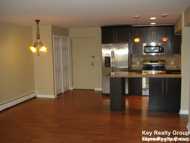 1 Bedroom, Thompsonville Rental in Boston, MA for $2,250 - Photo 2