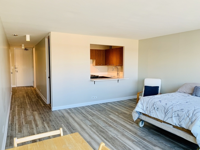 Studio, East Hyde Park Rental in Chicago, IL for $1,200 - Photo 2