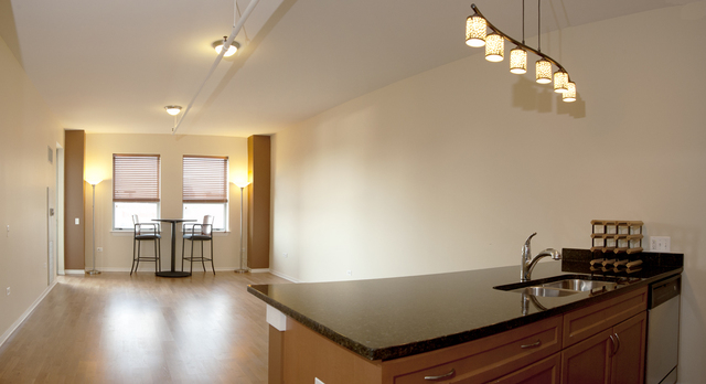 2 Bedrooms, Cabrini-Green Rental in Chicago, IL for $3,000 - Photo 2