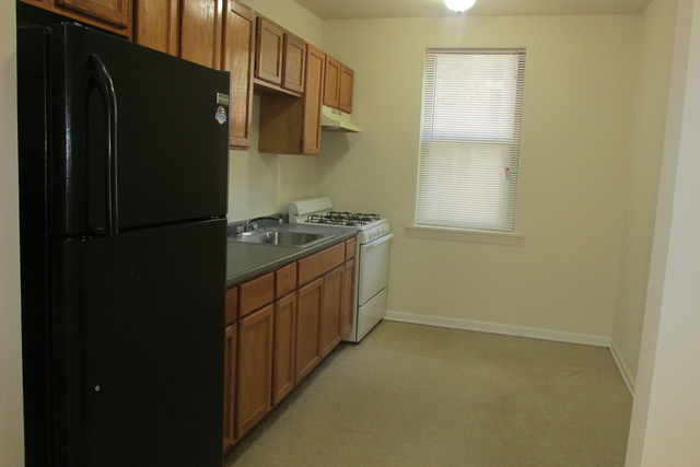 2 Bedrooms, Douglas Rental in Chicago, IL for $1,250 - Photo 1