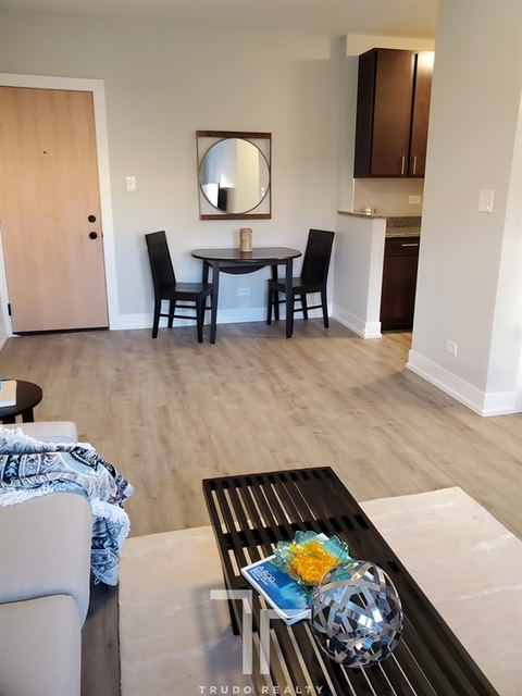 Studio, Lake View East Rental in Chicago, IL for $1,395 - Photo 2