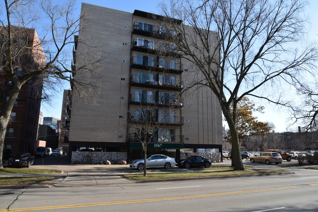 3 Bedrooms, Evanston Rental in Chicago, IL for $2,500 - Photo 1