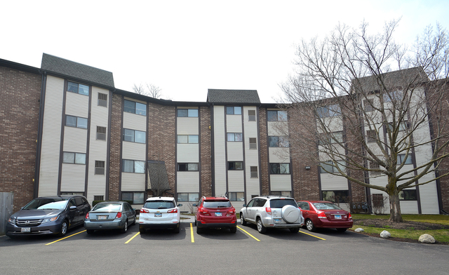 2 Bedrooms, Moraine Rental in Chicago, IL for $1,400 - Photo 1