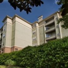 1 Bedroom, Randall Mill Rental in Atlanta, GA for $960 - Photo 2