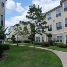 1 Bedroom, Concord Westhollow Apts. Rental in Houston for $899 - Photo 2