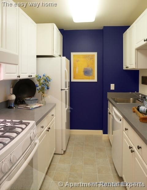3 Bedrooms, Strawberry Hill Rental in Boston, MA for $4,000 - Photo 2
