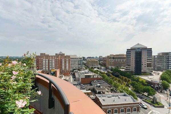 3 Bedrooms, Lyon Village Rental in Washington, DC for $4,682 - Photo 2
