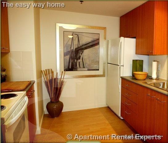 1 Bedroom, Cambridgeport Rental in Boston, MA for $3,175 - Photo 1