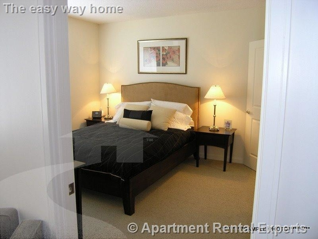 2 Bedrooms, Cambridgeport Rental in Boston, MA for $4,084 - Photo 2
