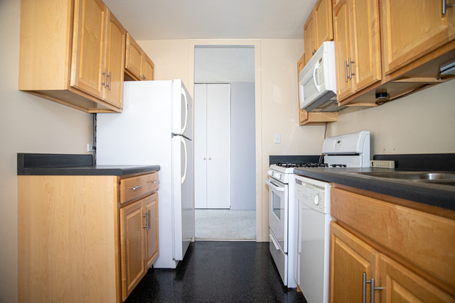1 Bedroom, South Shore Rental in Chicago, IL for $1,225 - Photo 2