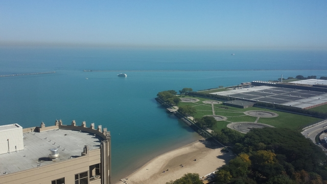 1 Bedroom, Streeterville Rental in Chicago, IL for $2,063 - Photo 1