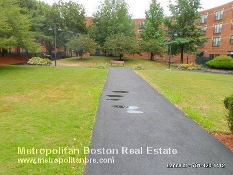 2 Bedrooms, Lower Roxbury Rental in Boston, MA for $4,675 - Photo 2