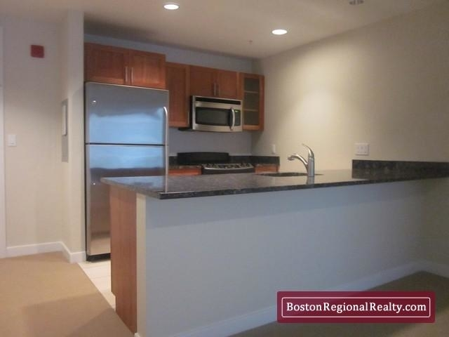 1 Bedroom, West End Rental in Boston, MA for $3,295 - Photo 2