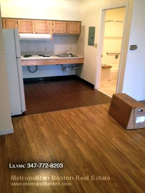 1 Bedroom, Chinatown - Leather District Rental in Boston, MA for $2,300 - Photo 1