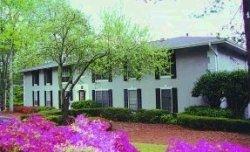 1 Bedroom, North Springs Rental in Atlanta, GA for $1,115 - Photo 2