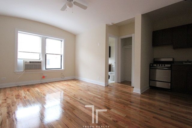 Studio, Park West Rental in Chicago, IL for $1,295 - Photo 2