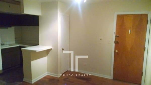 1 Bedroom, Gold Coast Rental in Chicago, IL for $1,595 - Photo 1