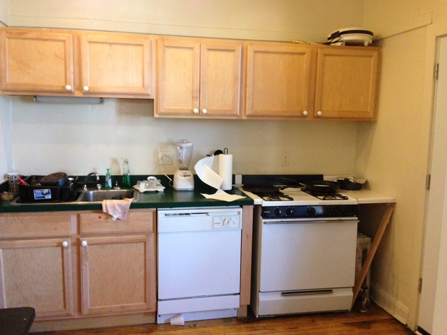 4 Bedrooms, Hyde Park Rental in Chicago, IL for $2,400 - Photo 1