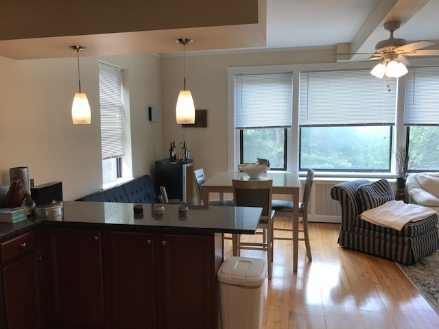 2 Bedrooms, Coolidge Corner Rental in Boston, MA for $3,400 - Photo 2
